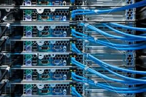 Website Hosting and Domain Names